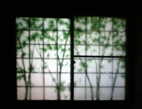 NEC_0121-2s障子夜間.jpg